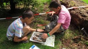 Leren in het groen tijdens Zomerschool Apeldoorn 2012